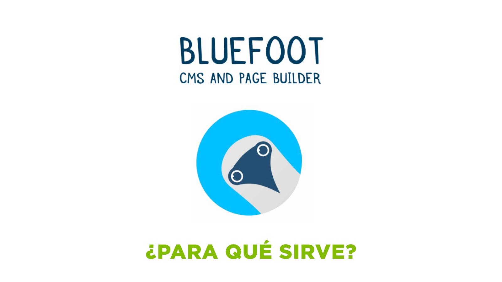 Header_Post_BlueFoot_v2